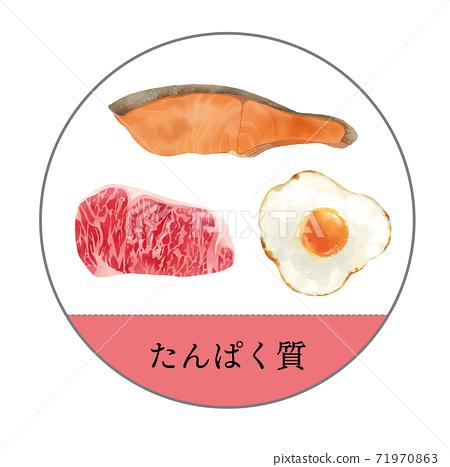 削減五種主要營養素蛋白質的插圖 71970863
