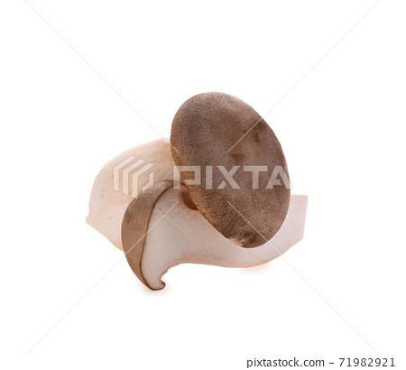 Eryngii Mushroom isolated on white background 71982921