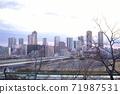 從玉川台公園看的武藏小杉塔公寓 71987531