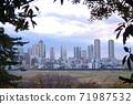 從玉川台公園看的武藏小杉塔公寓 71987532