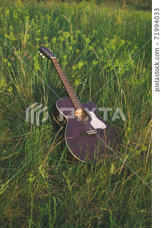 acoustic guitar on the grass. musical instrument guitar in flowers. classic  71994033