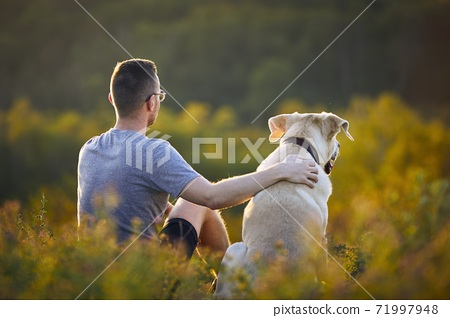 Man sitting with dog on meadow 71997948