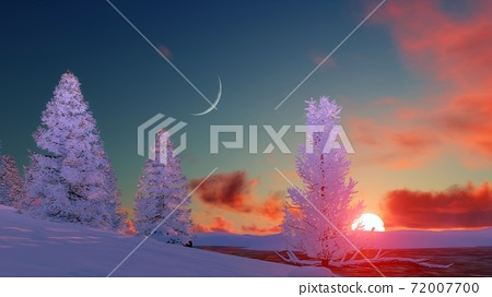 Snowy winter firs at scenic sunset 3D landscape 72007700