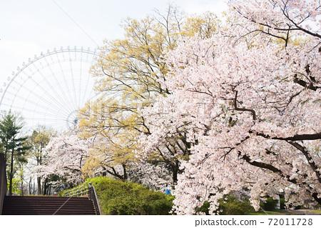 春季博覽會紀念公園 72011728