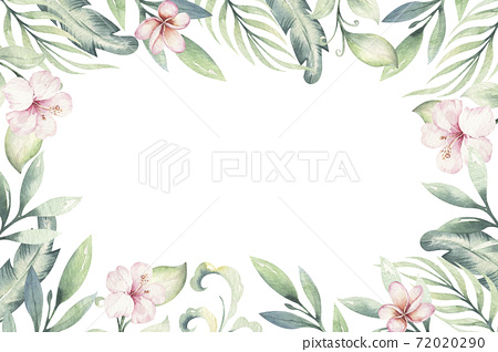 Hand drawn watercolor tropical flower background. Exotic palm leaves, jungle tree, brazil tropic botanical decoration botany elements and flowers. Perfect for fabric design. 72020290