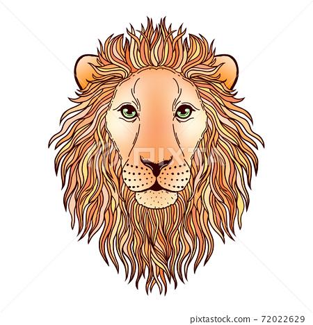 Lion muzzle on white 72022629