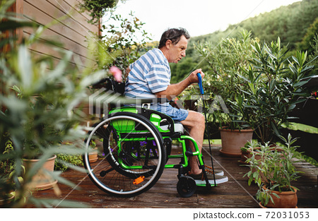 Senior man in wheelchair doing exercise on terrace. 72031053