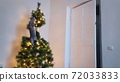 A cute playful cat climbed into the Christmas tree. 72033833