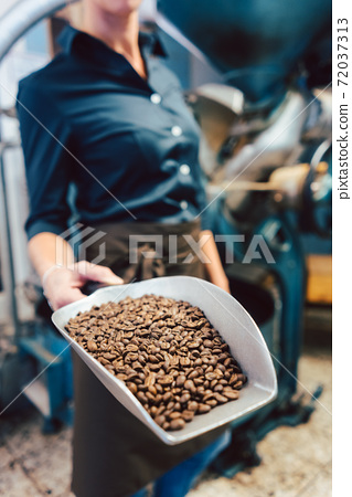 Barista woman with a sample of freshly roasted coffee beans 72037313