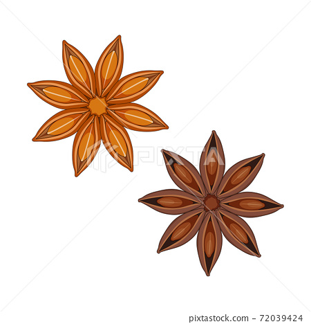 Star anise isolated on white background. 72039424