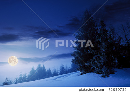 fog on a bright winter night. spruce trees among the glowing mist in full moon light. beautiful scenery in mountains. hills covered in snow. cold frosty weather 72050733