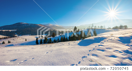 mountainous rural landscape in wintertime. wonderful frosty sunny day. trees on the snow covered hills. 72050745
