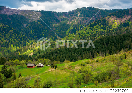 mountain rural landscape in spring. forest and orchard on the steep hills. scenery of abandoned Kuzsbej village. two houses in the distance. cloudy sky 72050760