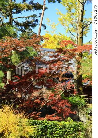 가을의 카메 야마 성터 72063275