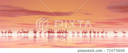 Flock of flamingos - 3D render 72073600