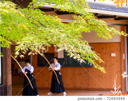 Vivid maple and archery practice 72093949