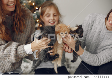 Family at home with little cats 72111444