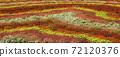 꽃밭 72120376