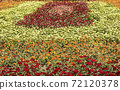 꽃밭 72120378