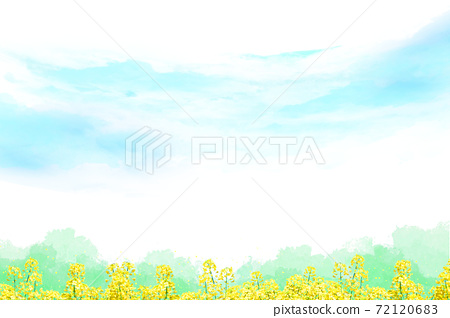Blue sky and rape field background with watercolor touch 72120683