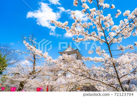 春天的白石城和櫻花[宮城縣] 72123704