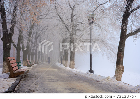 trees in mist on a frosty morning. wonderful urban scenery in wintertime. location linden alley on the embankment of river uzh 72123757
