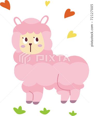羊駝 72127885