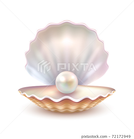 Pearl Shell Realistic Close Up Image 72172949