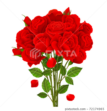 Rose Bouquet Illustration 72174965