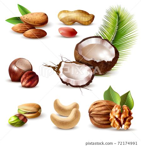 Nuts Realistic Set 72174991