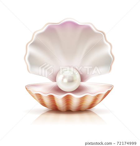 Shell Pearl Realistic Isolated Image 72174999
