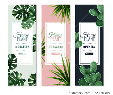 Realistic House Plants Vertical Banners 72176369