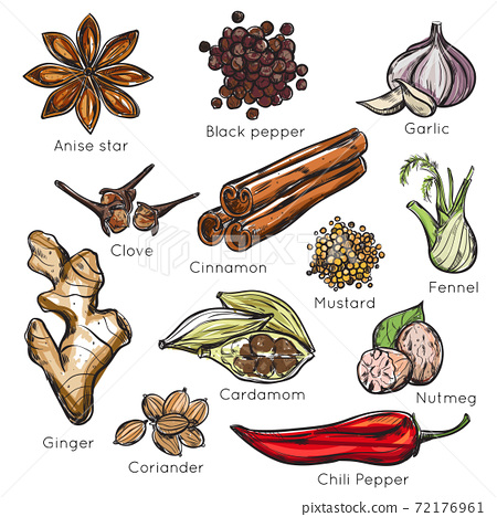 Indian Spices Herbs Icon Set 72176961