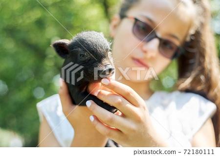 Girl child holding in hands of black newborn baby piglet 72180111