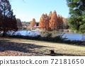 모험의 호수와 카누의 집 72181650
