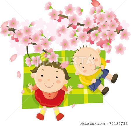 꽃놀이 경단 72183738