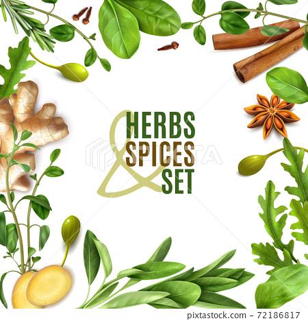 Herbs Realistic Frame 72186817