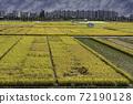 논(rice paddy) 72190128