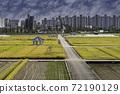 논(rice paddy) 72190129