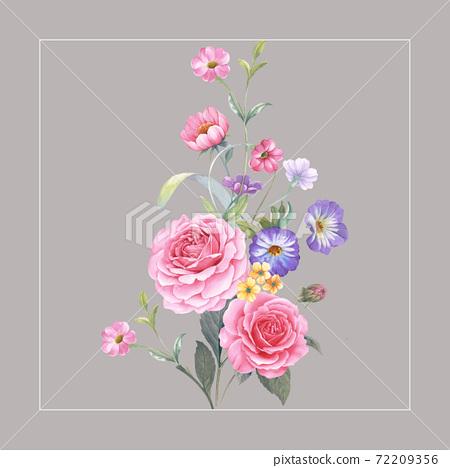 色彩豐富的花卉素材組合和設計元素 72209356