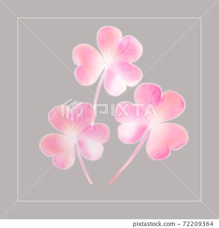 色彩豐富的花卉素材組合和設計元素 72209364