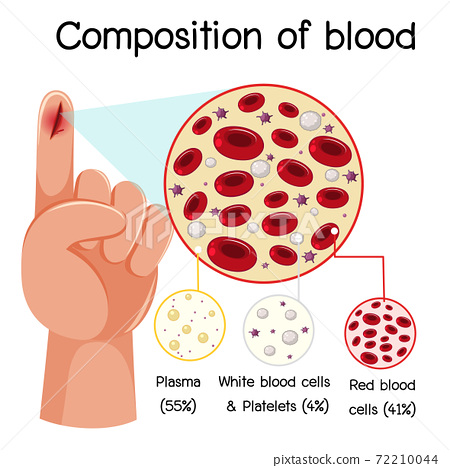 Composition of blood diagram 72210044