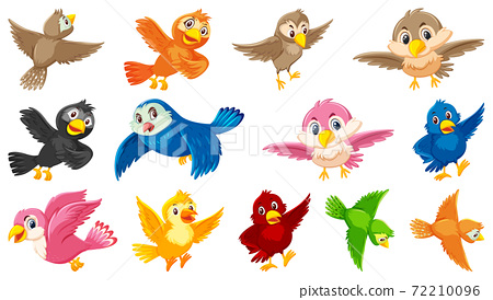 Set of bird cartoon character 72210096