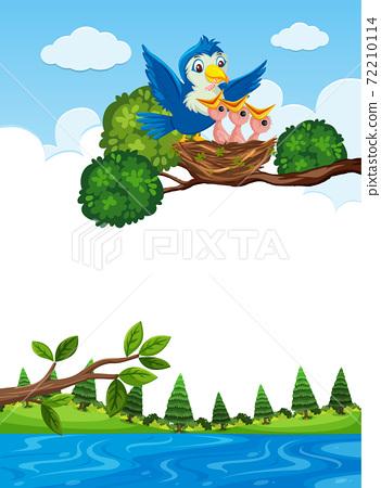 Chicks in nest on tree branch 72210114