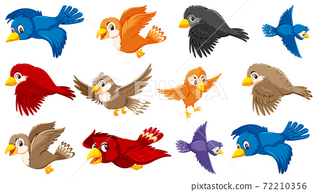 Set of bird cartoon character 72210356