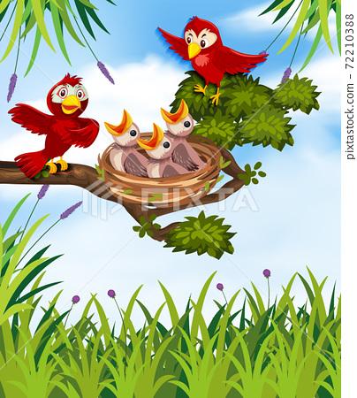 Bird in nature background 72210388