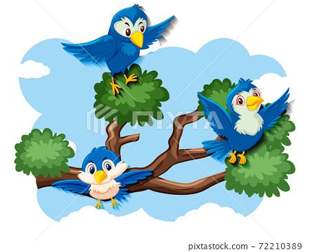 Happy bird flying in nature 72210389
