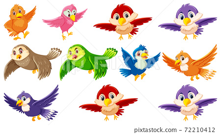 Set of bird cartoon character 72210412