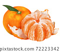 Mikan柑橘類水果圖 72223342