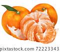 Mikan柑橘類水果圖 72223343